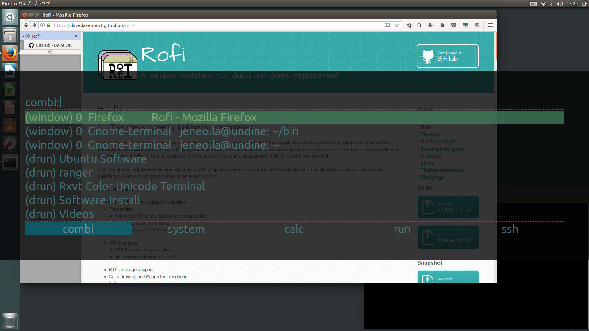 rofi_customized_dashboard_1.jpg